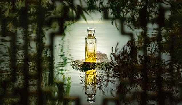 Ароматы лета: Hermes Le Jardin de Monsieur Li